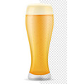 beer in glass transparent stock vector image vector image