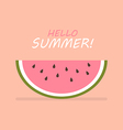 Hello summer of slice of watermelon vector image vector image