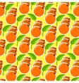 The pattern with oranges and leaves vector image vector image