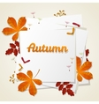 Autumn seasonal banner design Fall leaf