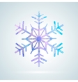 Bright colourful ice snowflake vector image vector image