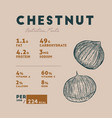 chestnut health benefits vector image vector image