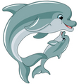 dolphin mother and baby vector image vector image