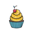 lemon cupcake with cherry vector image vector image