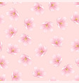 sakura cherry blossom on pink background vector image vector image
