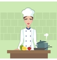Chef cooking food Flat style vector image vector image