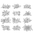 Collection of hand drawn floral compositions vector image vector image