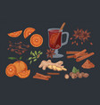 mulled wine and spices hand drawn vector image
