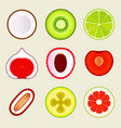 set of flat fruit and vegetables colored simple vector image vector image