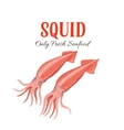 Squid in cartoon style vector image vector image