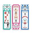 circus entrance tickets vector image