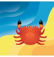Crab on the sand vector image