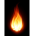 Burning flame fire background vector | Price: 1 Credit (USD $1)