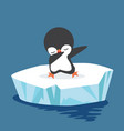 dabbing penguin on ice floe vector image vector image