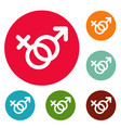 female and man gender symbol icons circle set vector image vector image