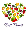 fresh juicy fruits in heart symbol vector image vector image
