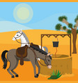 horses with waterhole vector image