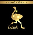 isolated vintage gold emblem for farm with ostrich vector image vector image