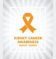 kidney cancer awareness vector image vector image
