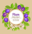 plum branches frame on color background vector image vector image