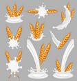 rice milk splash set realistic vector image vector image