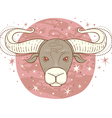 taurus zodiac sign vector image