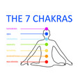 the seven chakras with their respective colors vector image vector image