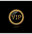 VIP golden badge vector image