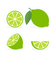 collection fresh whole half and slice lime vector image vector image