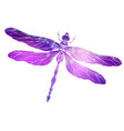 dragonfly with a boho pattern and cosmic vector image