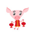 pig in chinese clothes with isolated on white vector image vector image