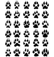 print of dogs paws vector image
