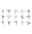 set of black bare trees on an empty background vector image vector image