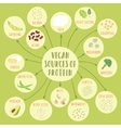Vegan sources of protein vector image vector image
