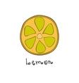 Doodle grapefruit slice vector image