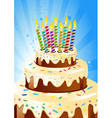 birthday cake and candle vector image vector image