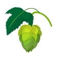 branch hops cartoon icon vector image