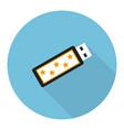Flat usb flash drive vector image