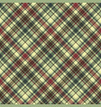green plaid diagonal seamless fabric texture vector image