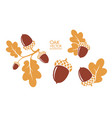 isolated oak and acorns on white background vector image vector image