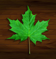 Realistic maple leaf on wooden background vector image