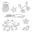 sea animals in contours vector image