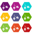 branch of hops icon set color hexahedron vector image vector image