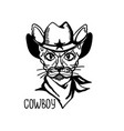 cat cowboy with western cowboy hat and bandanna vector image vector image