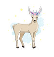 deer cartoon designcute bambi animal merry vector image