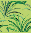 greenery fresh palm background design tropical vector image