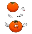 Orange fruit with glossy peel cartoon character vector image vector image