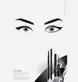 poster cosmetic eyeliner with packaging vector image vector image