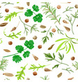 seamless pattern herbs and spices vector image vector image