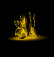soccer yellow neon background vector image vector image